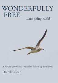 Wonderfully free book 00023