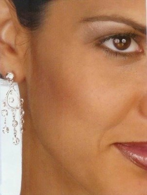 OBLONG RHINESTONES  EARRINGS