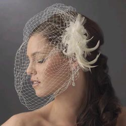 FEATHER FASCINATOR & CAGE VEIL