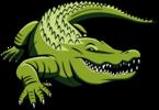 """Swimpro Aquatics """"Gators"""" Team Store"""