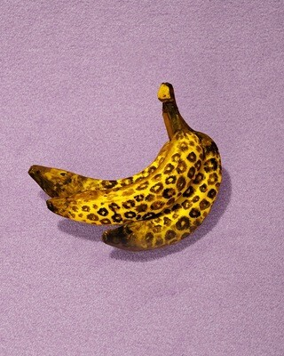 Bananas Fine Art Print 50x60