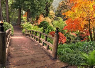 Мостик в осень. Фотообои, мостик. Размер: 272х194 см.
