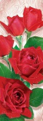 Розовое торжество.  Фотообои на стену, розы. Размер: 97х272 см.