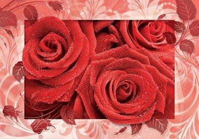 Кармен.  Фотообои, розы. Размер: 194х136 см.