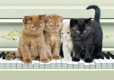 Квартет.  Фотообои, котята. Размер: 194х136 см.