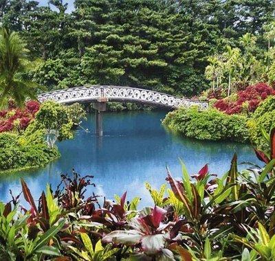 Японский парк. Фотообои,  японский сад. Размер: 204х194 см.