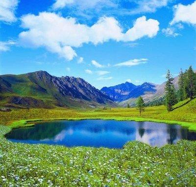 Озеро в цветах. Фотообои, красивая природа. Размер: 204х194 см.
