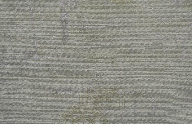 Регата фон арт. 81806