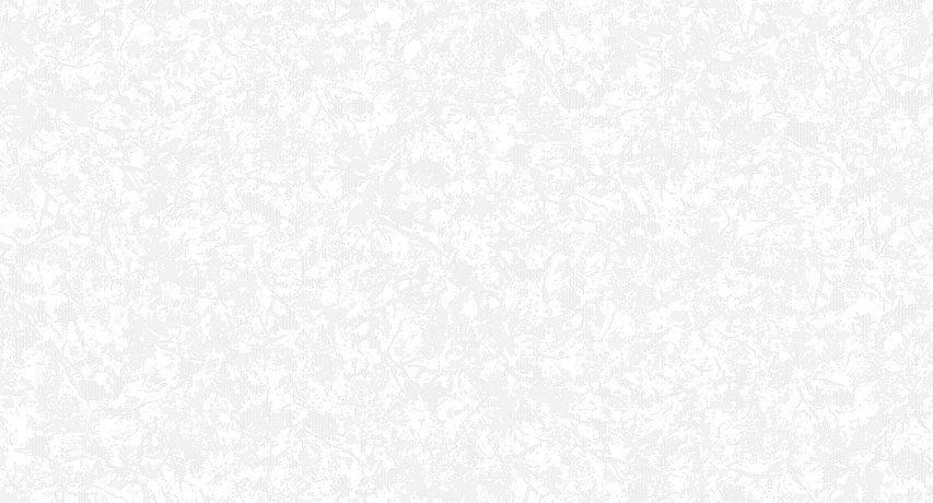 арт. 998 491