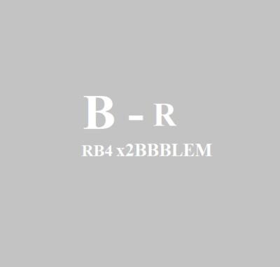 Blemish_R