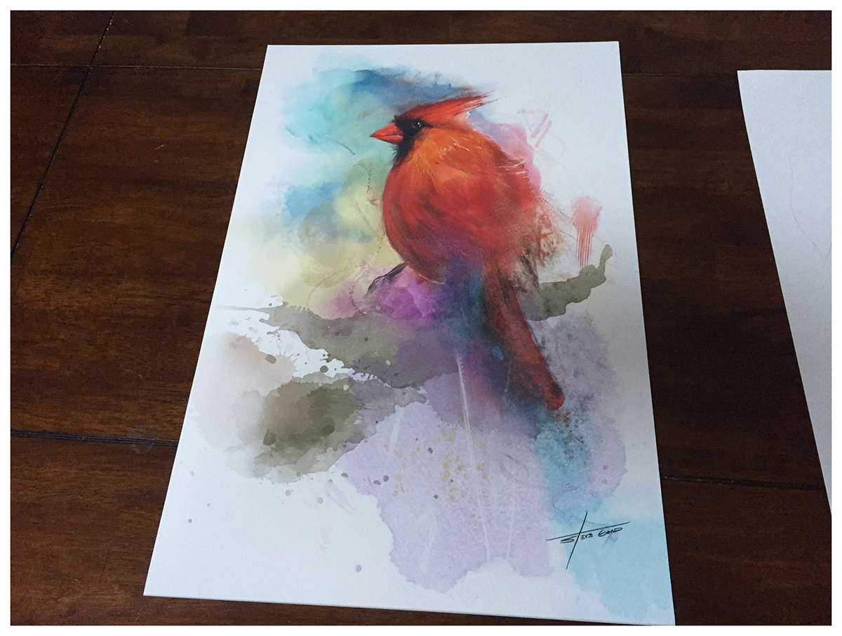 "12 x 18 "" Limited Edition Cardinal Art Print"