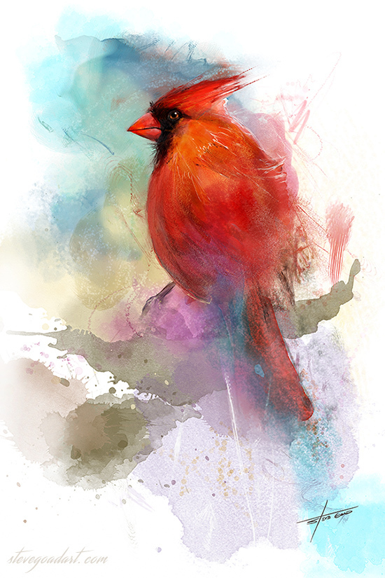 "12 x 18 "" Limited Edition Cardinal Art Print LE001"