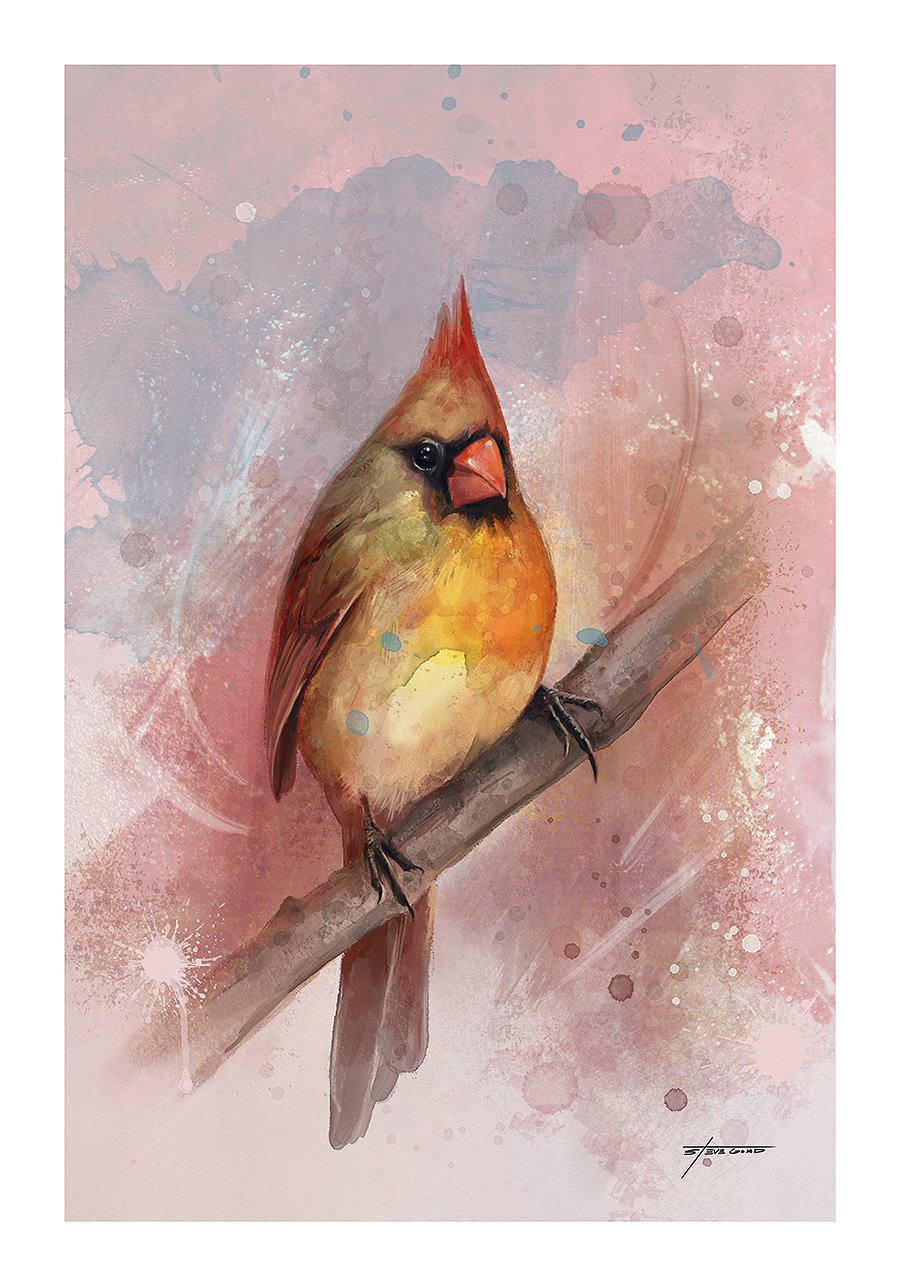 "12 x 18 "" Female Cardinal Print OE001"