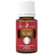 Melaleuca alternifolia  (Tea Tree) 15ml