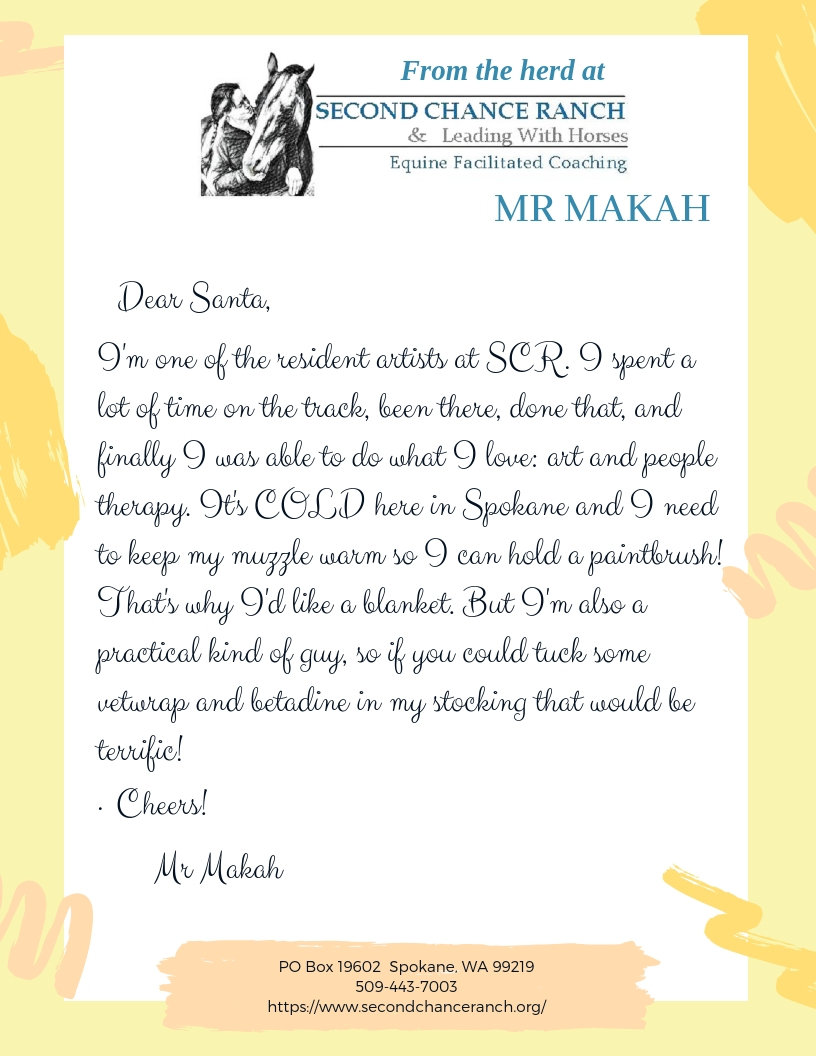 A BLANKET, BETADINE AND VET WRAP FOR MR MAKAH