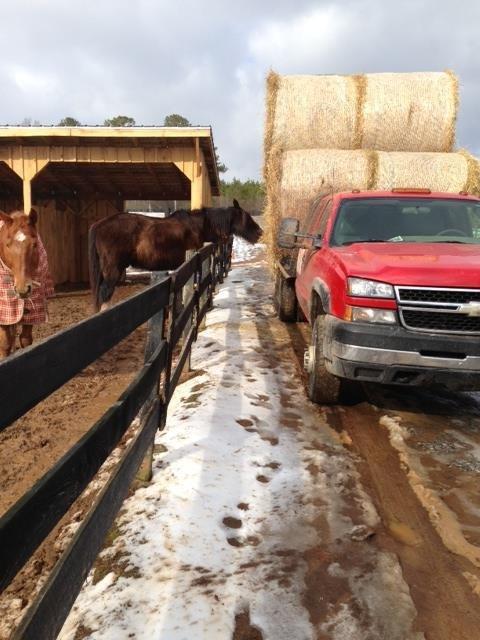 Ricky Curtis Farms