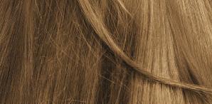 Biokap. Краска для волос (Delicato+) тон 8.03 «Блондин натурально-светлый» 8.03, 140мл арт. ND+ 00803,