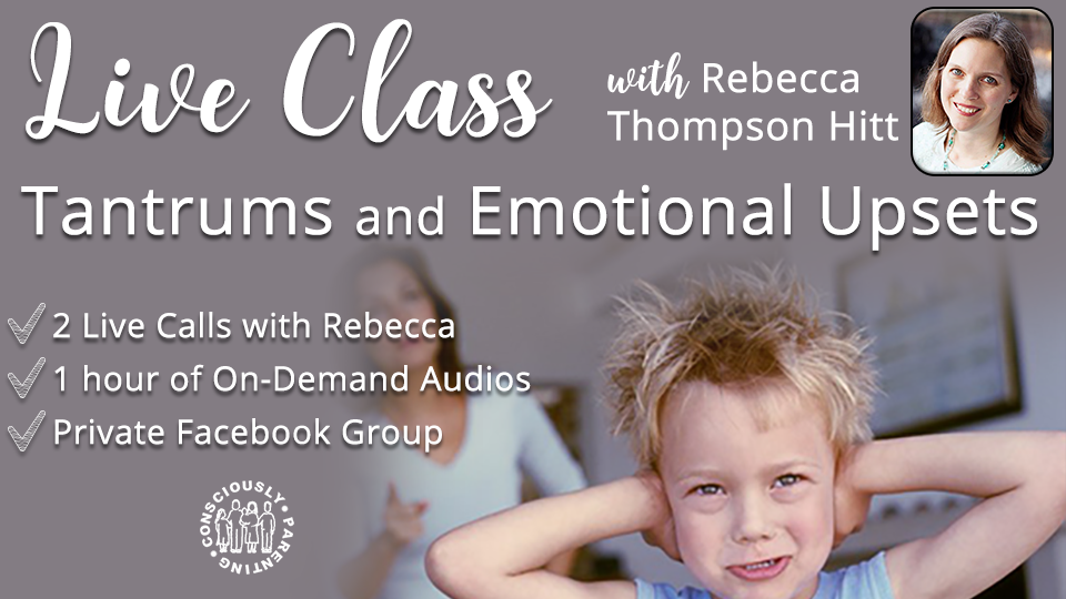Live Class: Tantrums and Emotional Upsets, Fall 2017 00143
