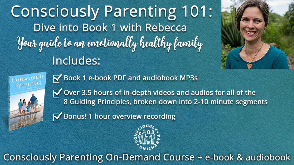 Consciously Parenting 101: Dive into Book 1 with Rebecca (pay what you can) 00149