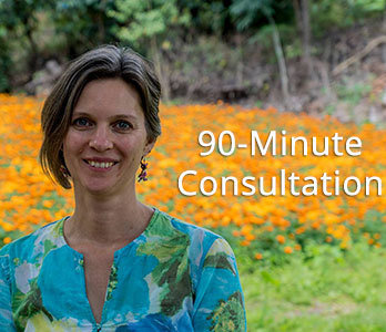 One 90-minute Consultation