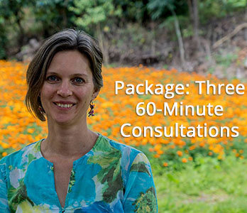 Package- Three One-Hour Consultations 00112