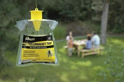 Rescue Wasp Trap - 3 Pack