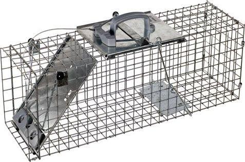 Raccoon Trap