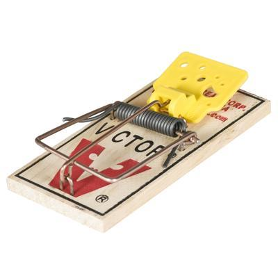 Easy Set Mouse Trap - 3 Pack