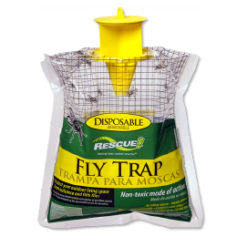 House Fly Traps