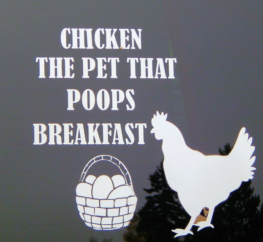 Car Decal-Chicken The Pet That Poops Breakfast