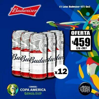 Copa América - Budweiser Lata 500x12