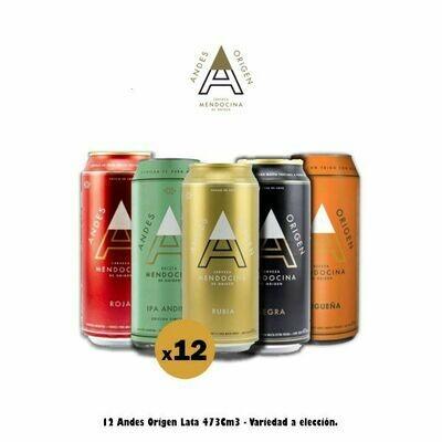 12 Andes Origen Lata 473 Cm3