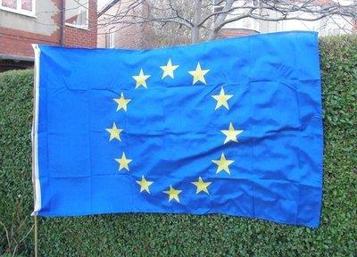 EU flag (150cm x 90cm) (UK postage included)