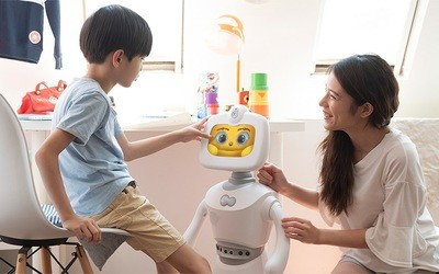 Home and office robot