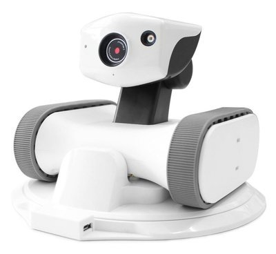 Riley Home Monitoring Robot