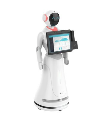 Professional service robot