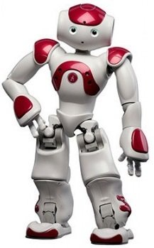 NAO Evolution programmable humanoid robot