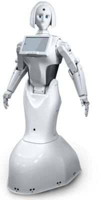 INNO Interactive Promo Robot Rental (Price is for daily Rent)