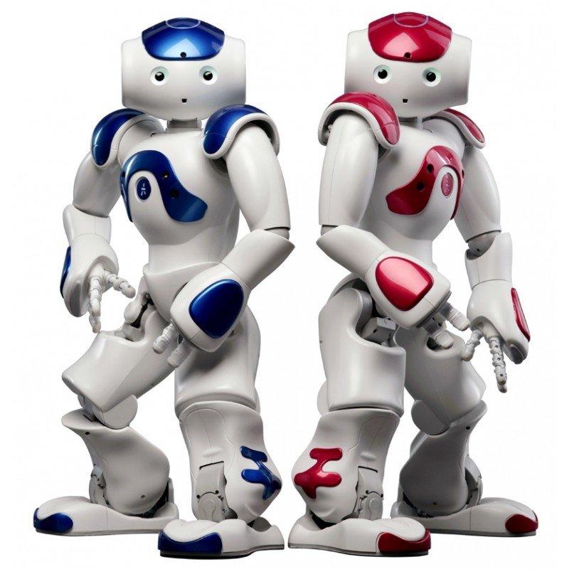 Home Robot Solution Demo