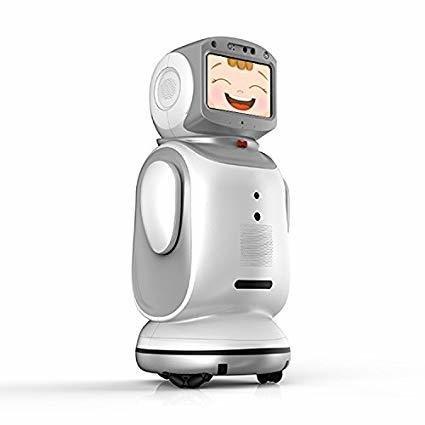 Sanbot Nano Humanoid Telepresence Robot