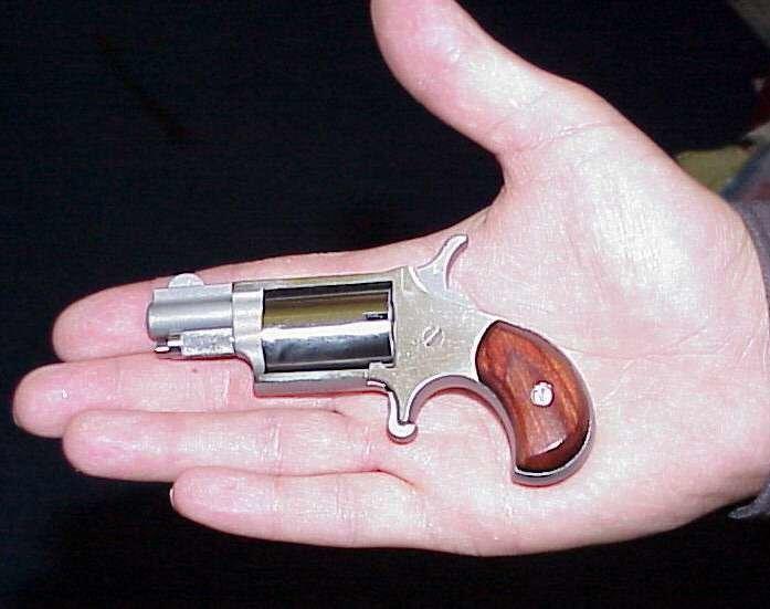 NAA 22LR Mini Revolver