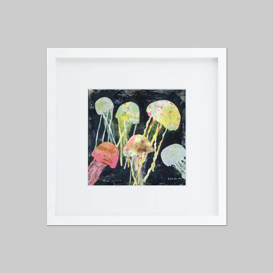 Jelly Fish 00072