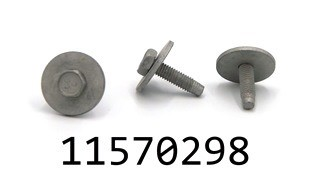 GM 11570298
