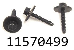 GM 11570499