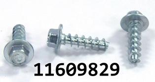 GM 11609829
