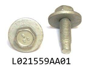 L021559AA01
