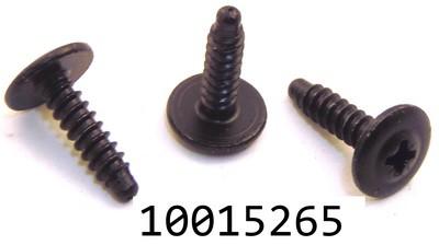 GM 10015265