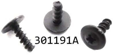 301191A