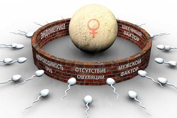 Запись вебинара №2 Бесплодие: современные методы лечения (300 грн, 750 руб)