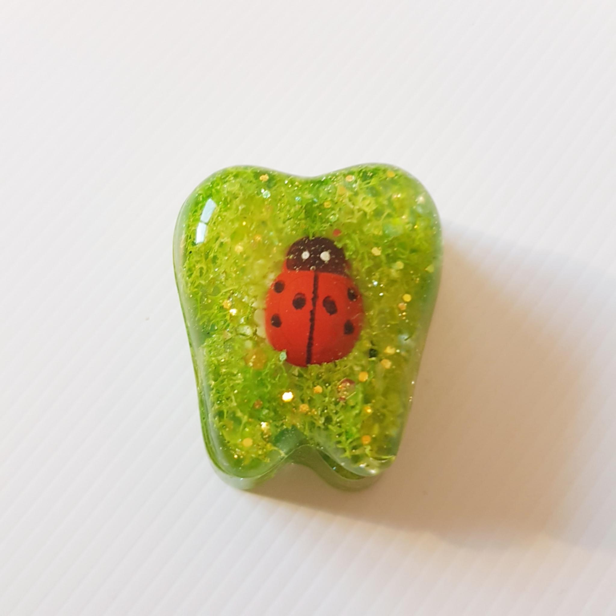 Tooth Fairy Box Ladybird 00310